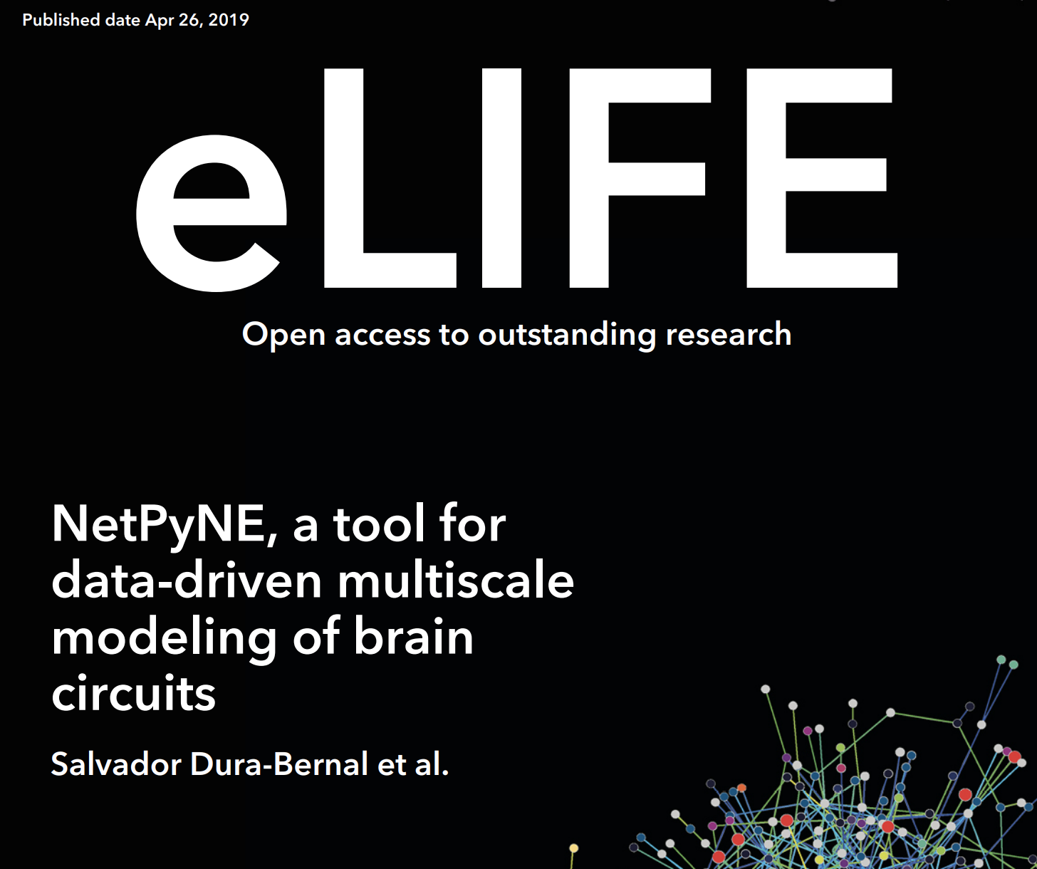 New publication in eLife on the NetPyNE tool | Neurosim lab